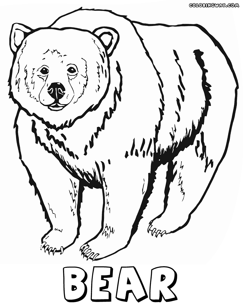 grizzly bear coloring page - search q=Grizzly Bear Coloring Pages&FORM=RESTAB
