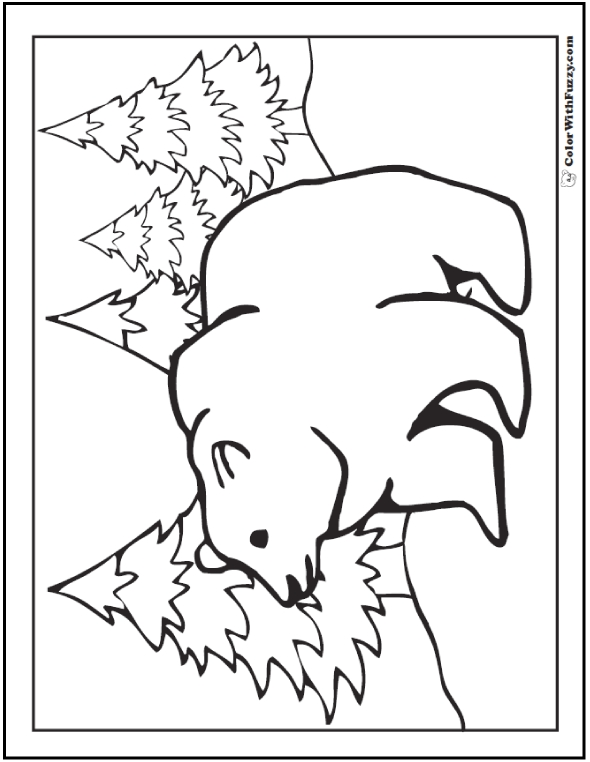 grizzly bear coloring page - grizzly bear pencil sketch templates