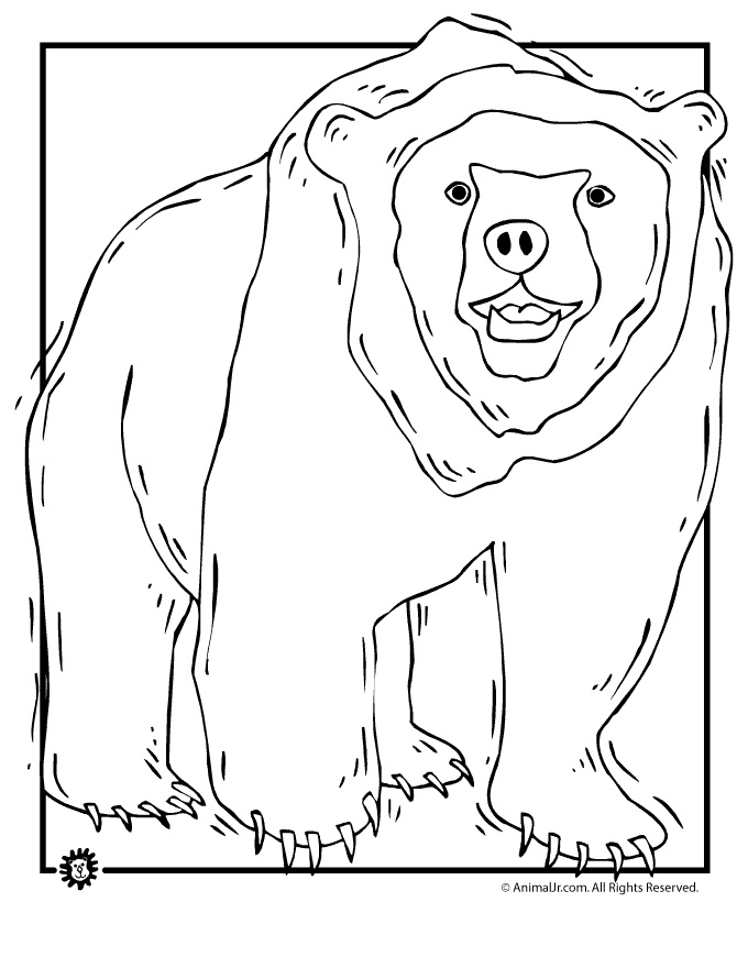 grizzly bear coloring page - Grizzly Bear