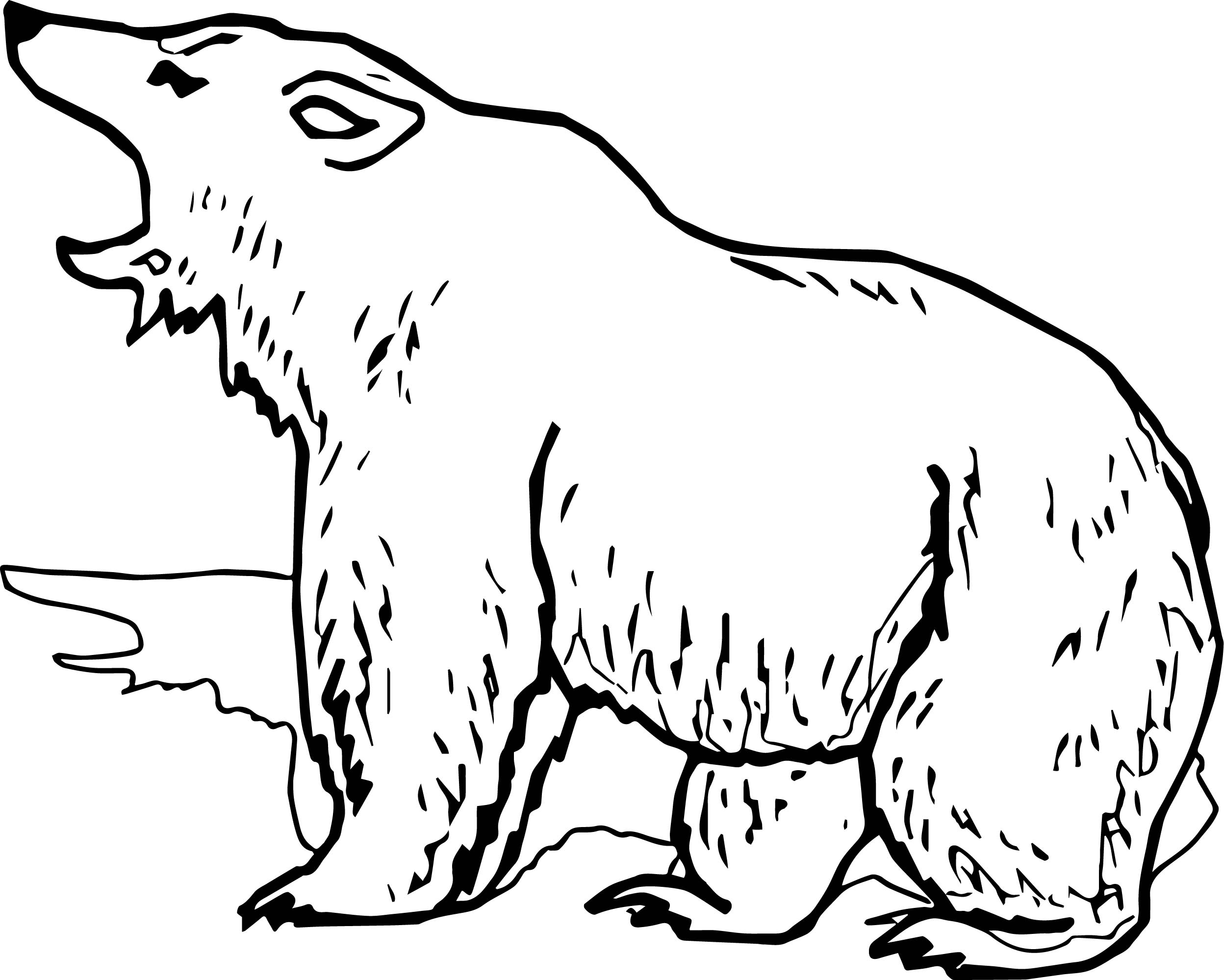 grizzly bear coloring page - grizzly bear yell coloring page