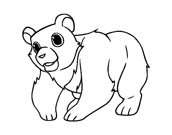 grizzly bear coloring page - mountain grizzly bear