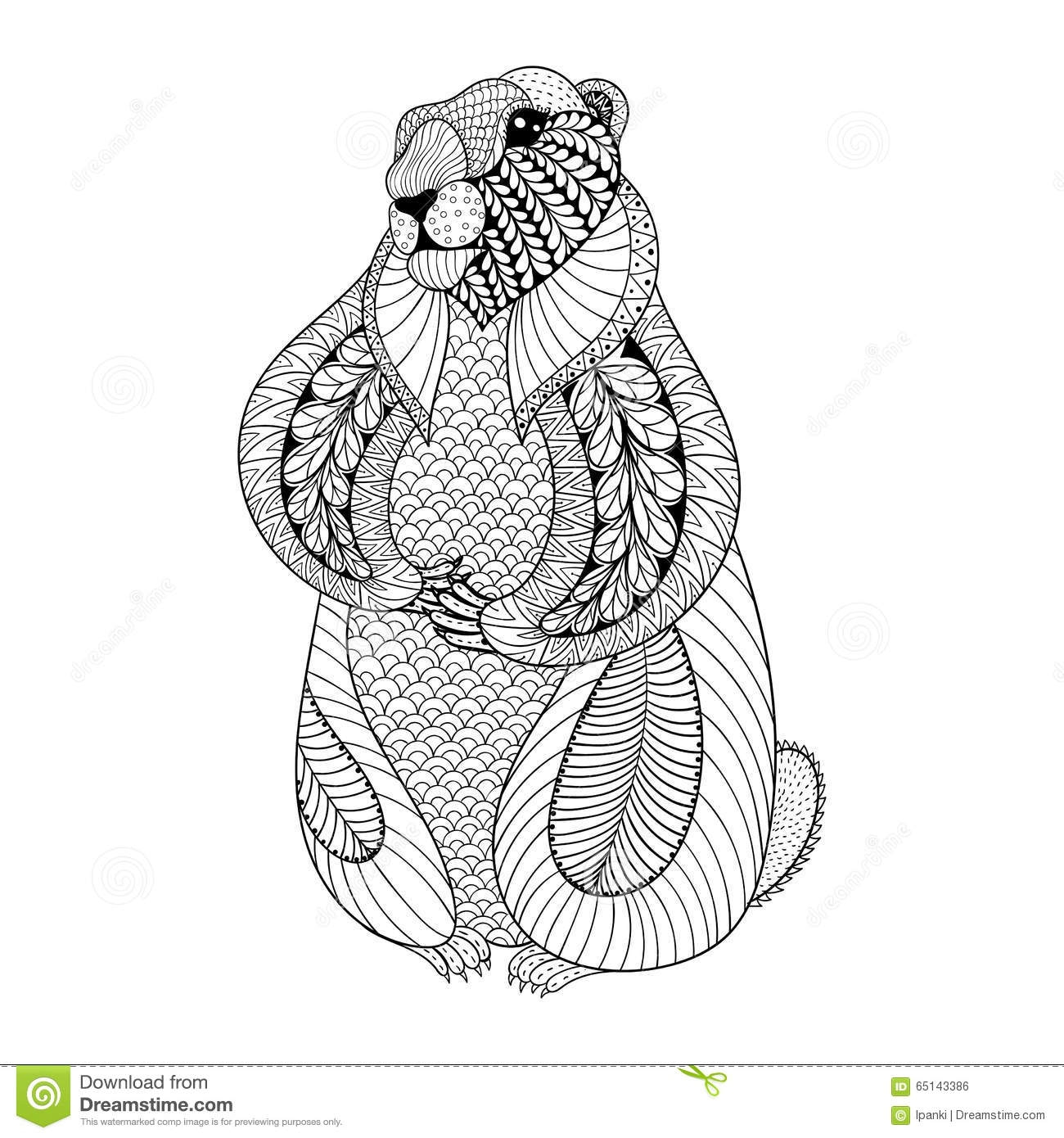 groundhog coloring page - stock illustration hand drawn groundhog adult coloring pages doodle zentangle tribal style day ethnic ornamental tattoo patterned t image