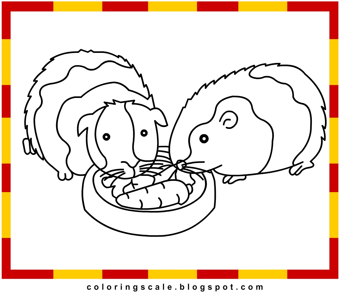 24 Guinea Pig Coloring Pages Collections Free Coloring Pages Part 2