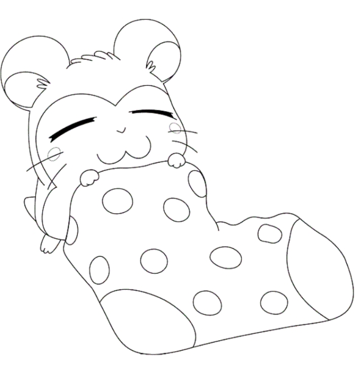 Hamster Coloring Pages - Cute Hamster Coloring Pages Az Coloring Pages