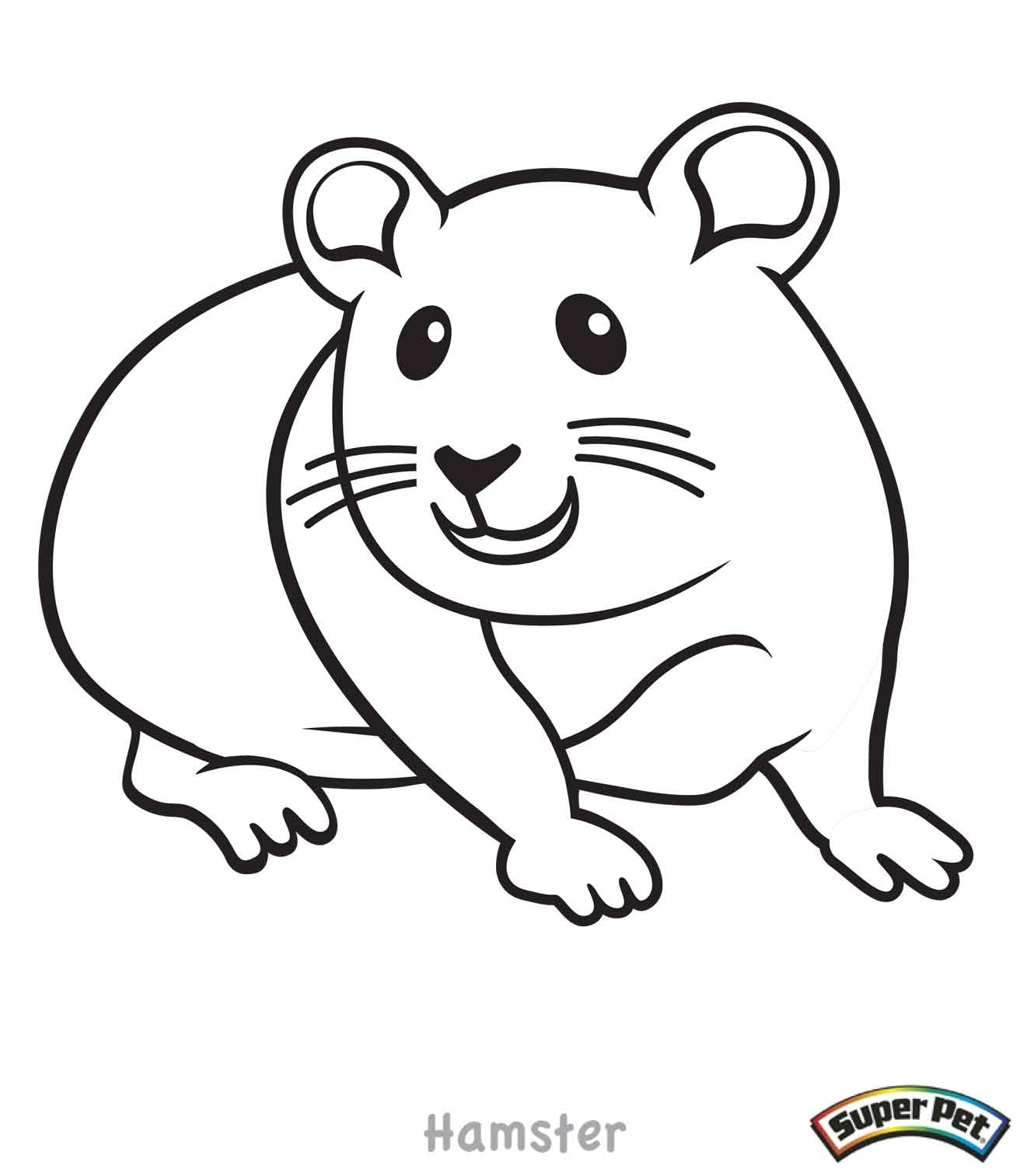 Hamster Coloring Pages - Pin Hamster Colouring Pages On Pinterest