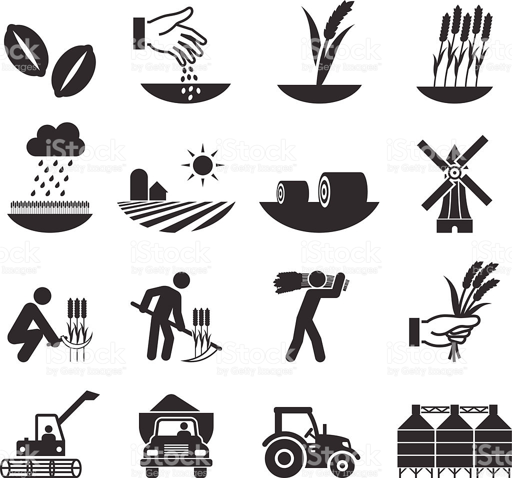 harvest coloring pages - wheat harvest growth and equipment black white icon set gm