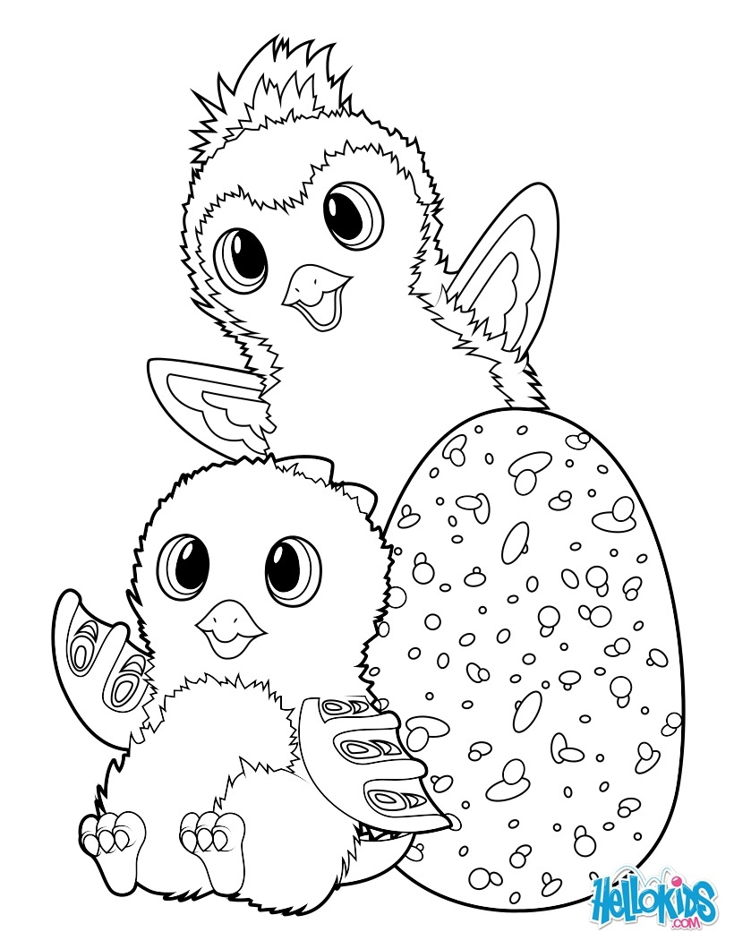 hatchimals coloring pages - hatchimals draggle et penguala