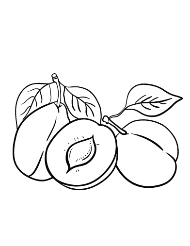 healthy food coloring pages - plum