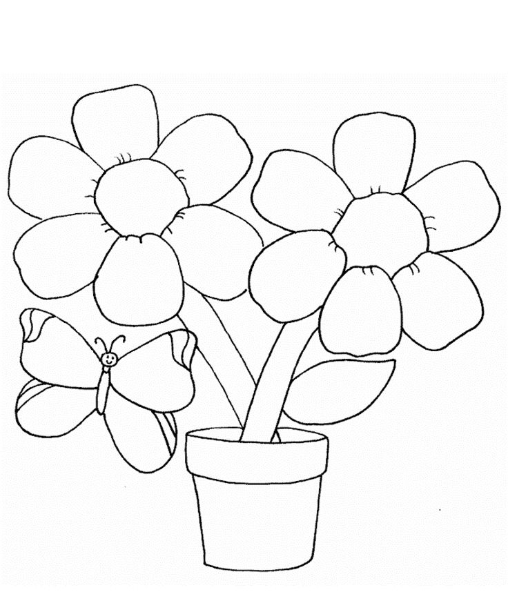 hibiscus coloring page - flower coloring pages