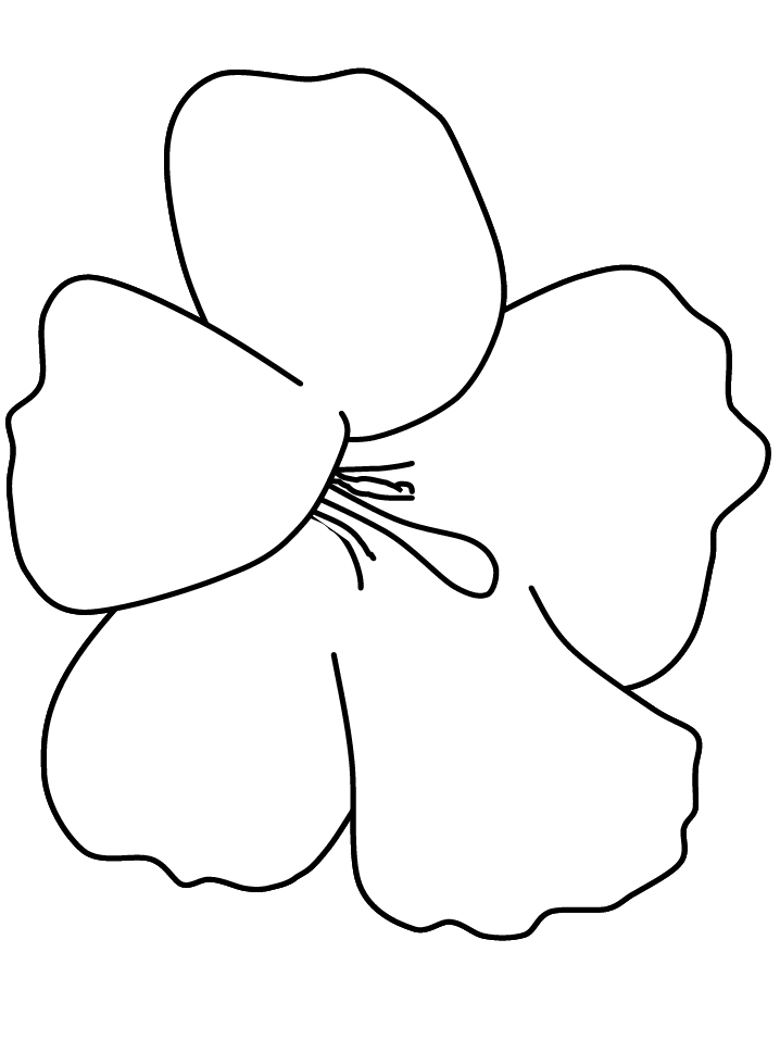 Hibiscus Coloring Page - Cartoon Hibiscus Flower Cliparts