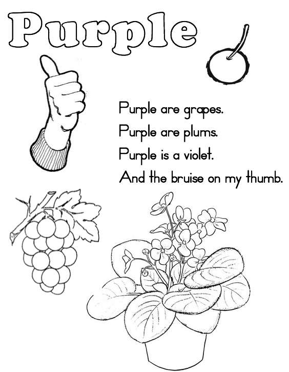 how many pages is the color purple - how many pages in the color purple