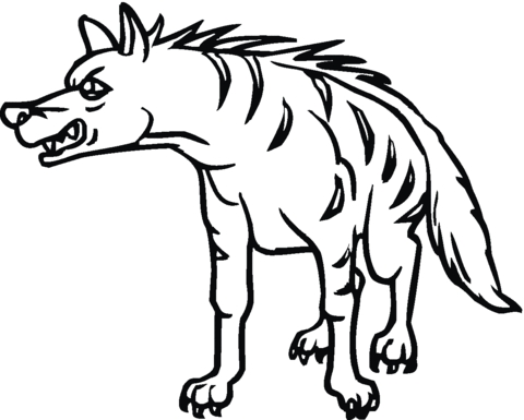 hyena coloring pages - hyena 11