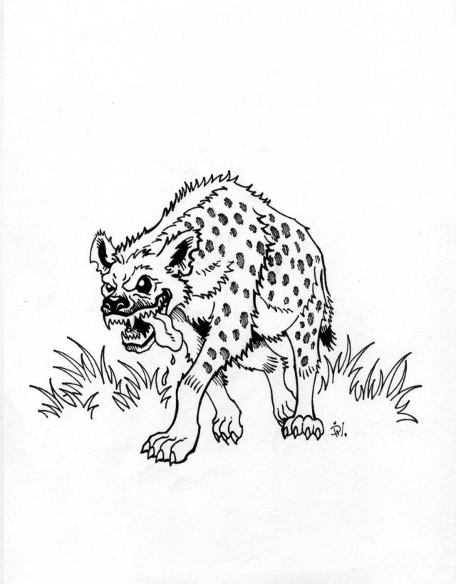 hyena coloring pages - hyena coloring page