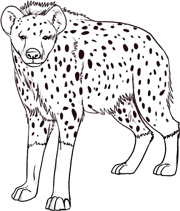 hyena coloring pages -