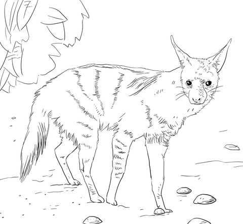 hyena coloring pages - 3
