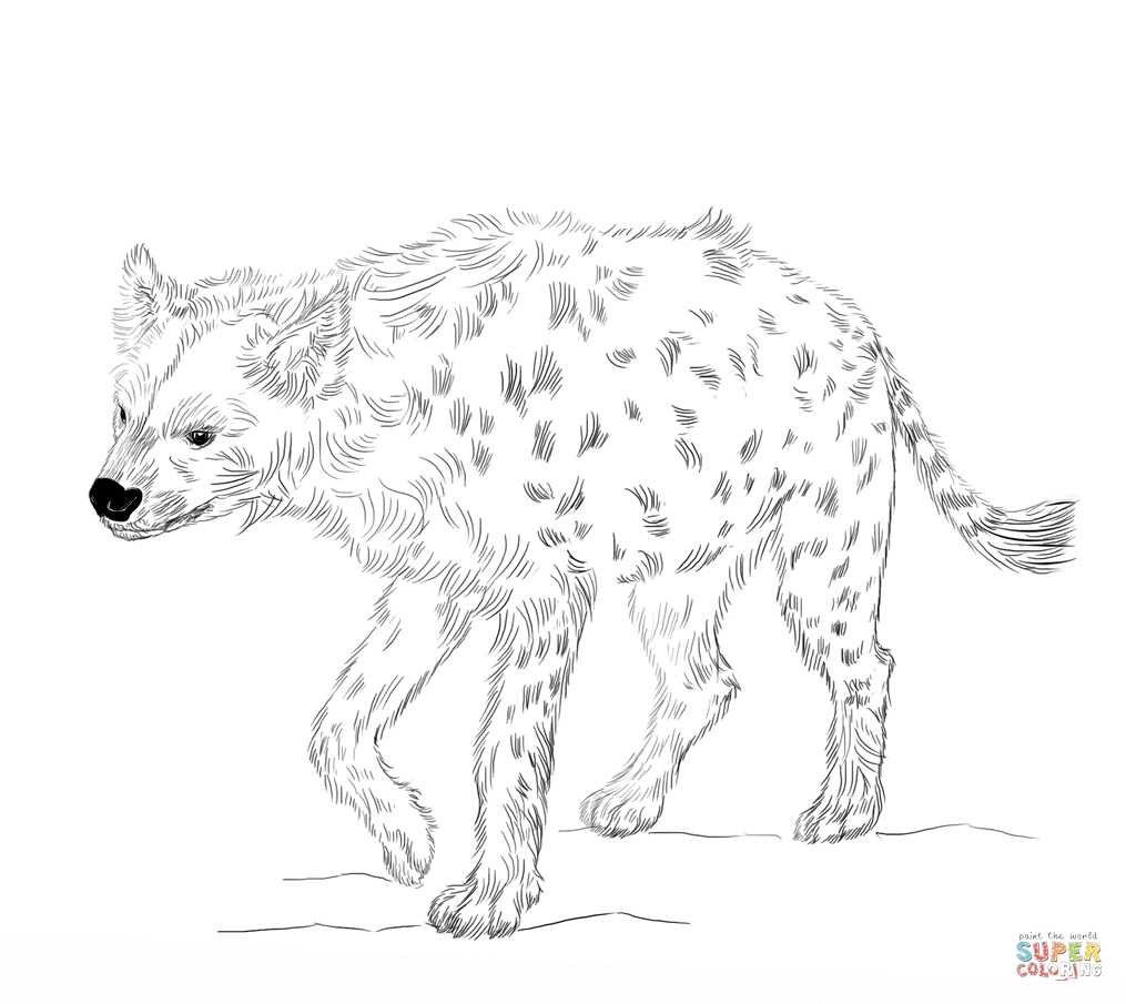 hyena coloring pages - laughing hyena coloring pages