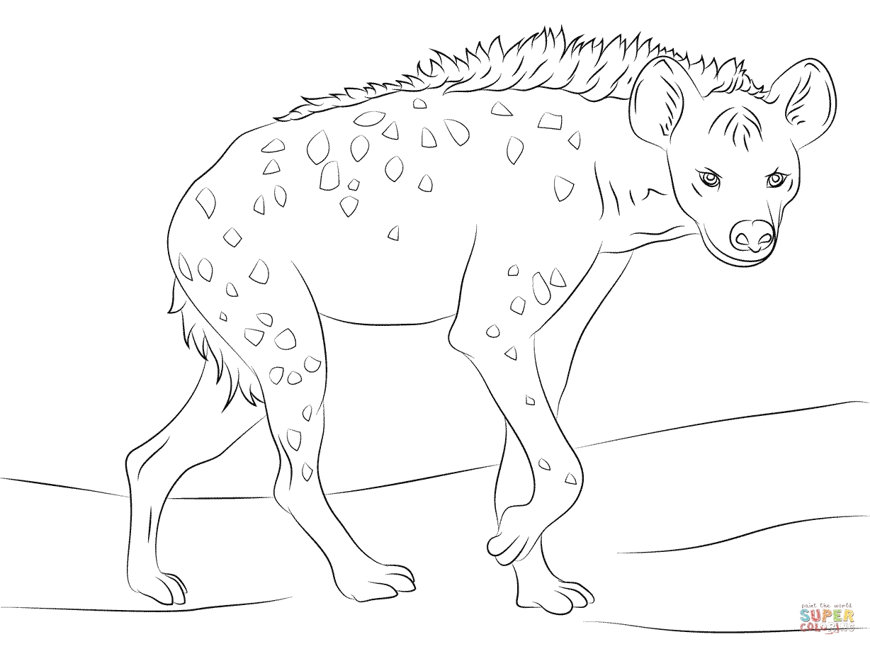 Hyena Coloring Pages - Spotted Hyena Coloring Page