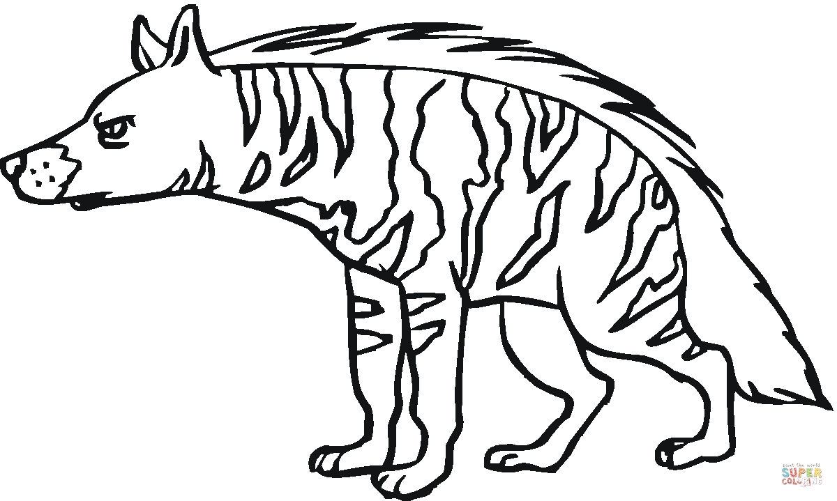 hyena coloring pages - hyena 12
