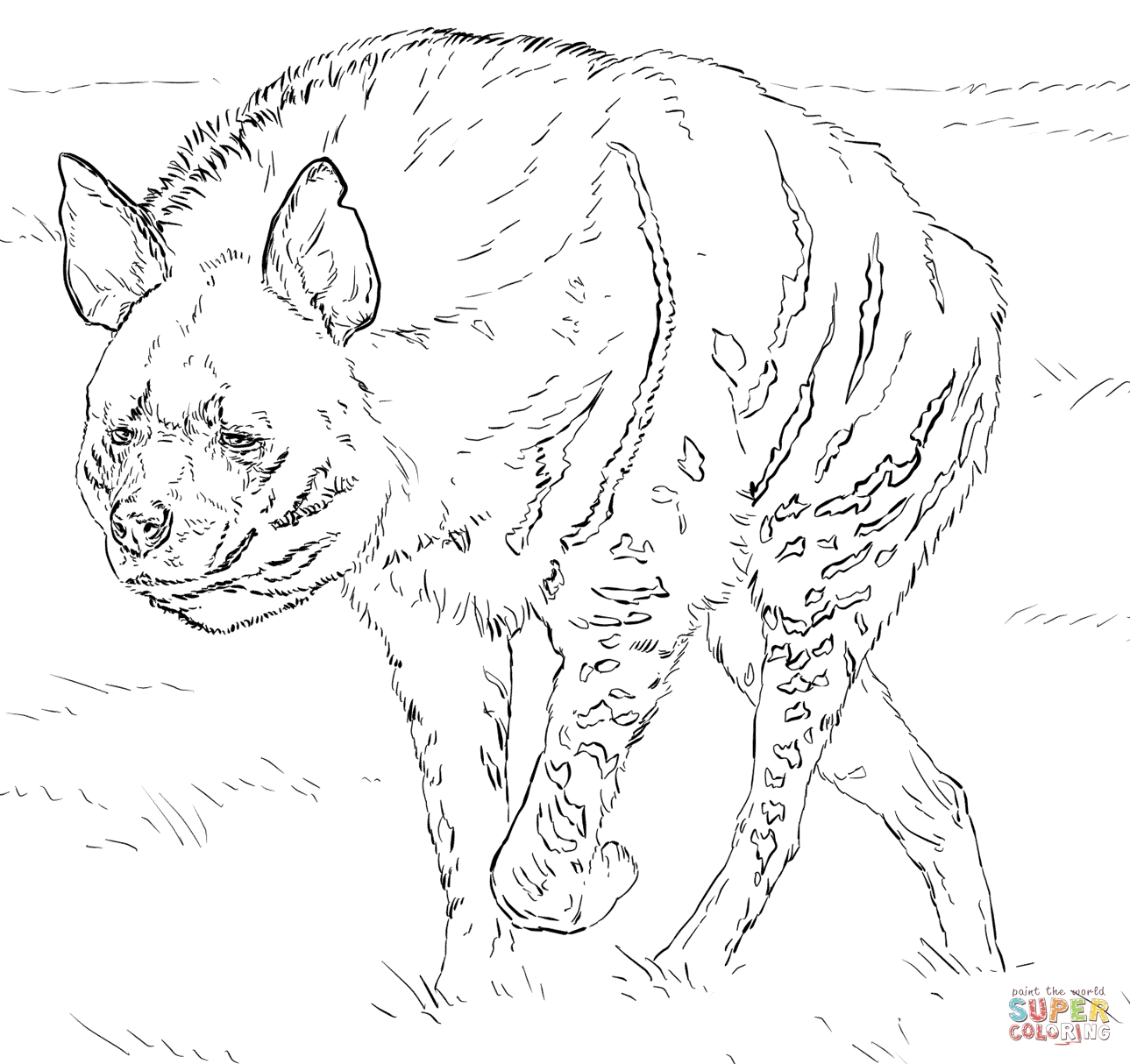 hyena coloring pages - striped hyena
