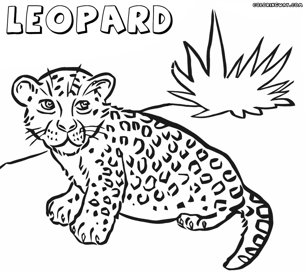 ice skating coloring pages - leopard coloring pages