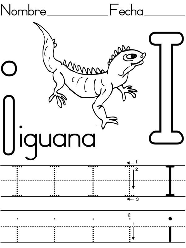 iguana coloring page - learning to write letter i for iguana coloring page