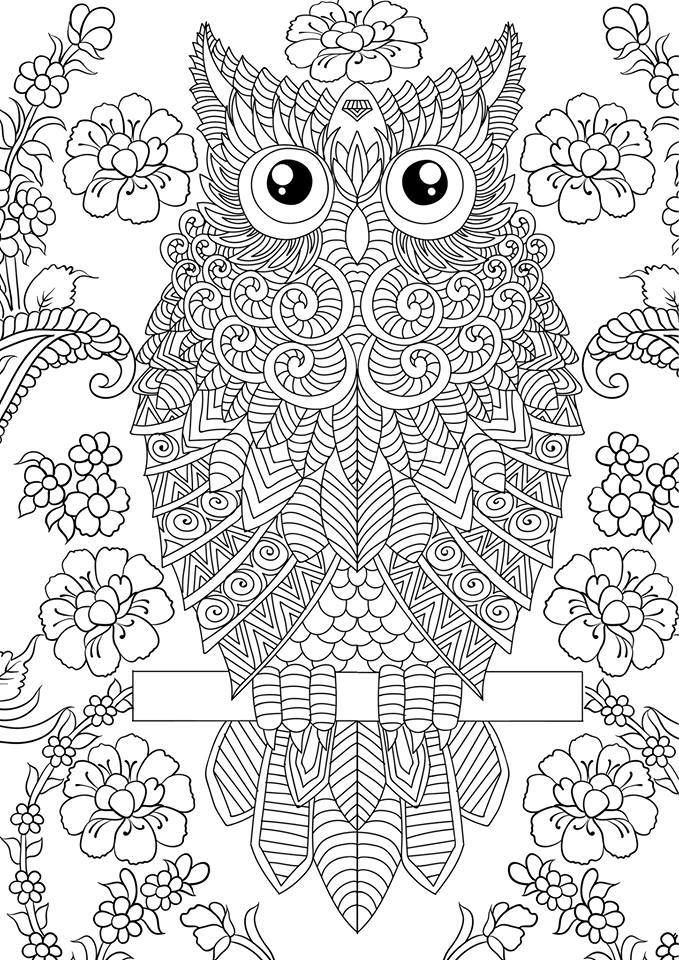24 Imagimorphia Coloring Pages