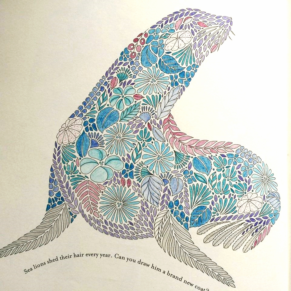 intricate coloring pages - interview with millie marotta illustrator of adult colouring books