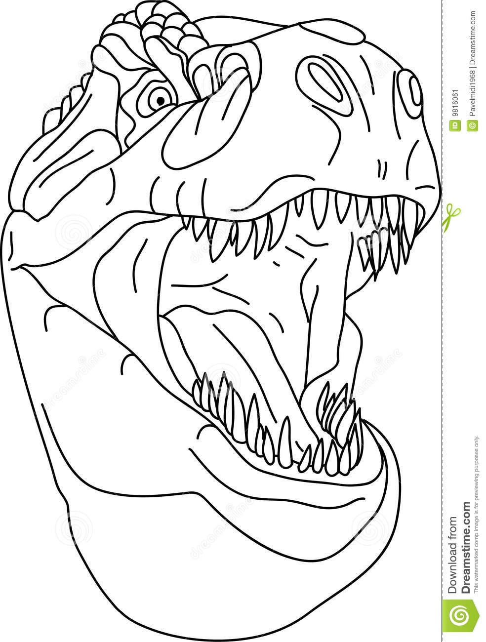 intricate coloring pages - stock image t rex head image