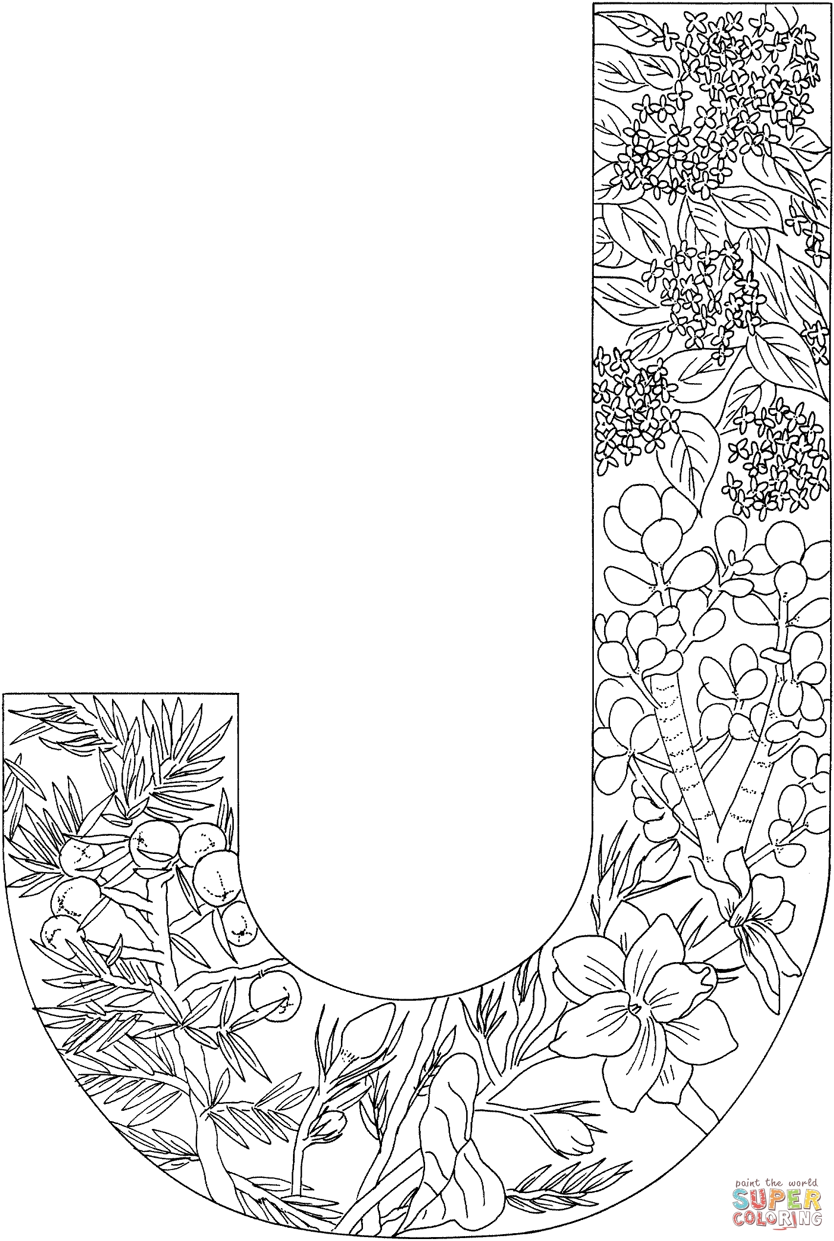 j coloring pages - letter j with plants