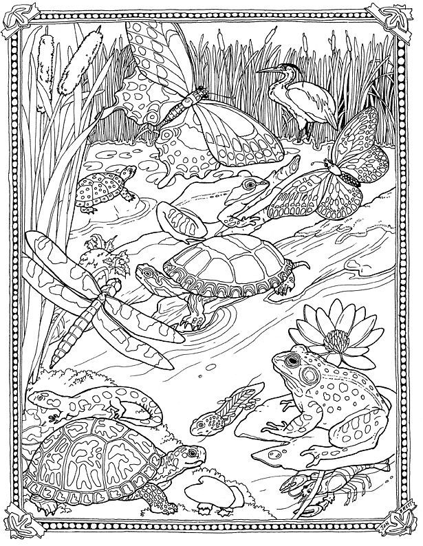 jan brett coloring pages - page 4