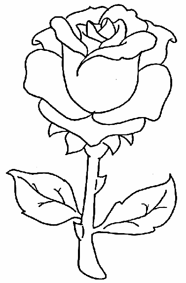 jasmine coloring pages - flower coloring pages for kids