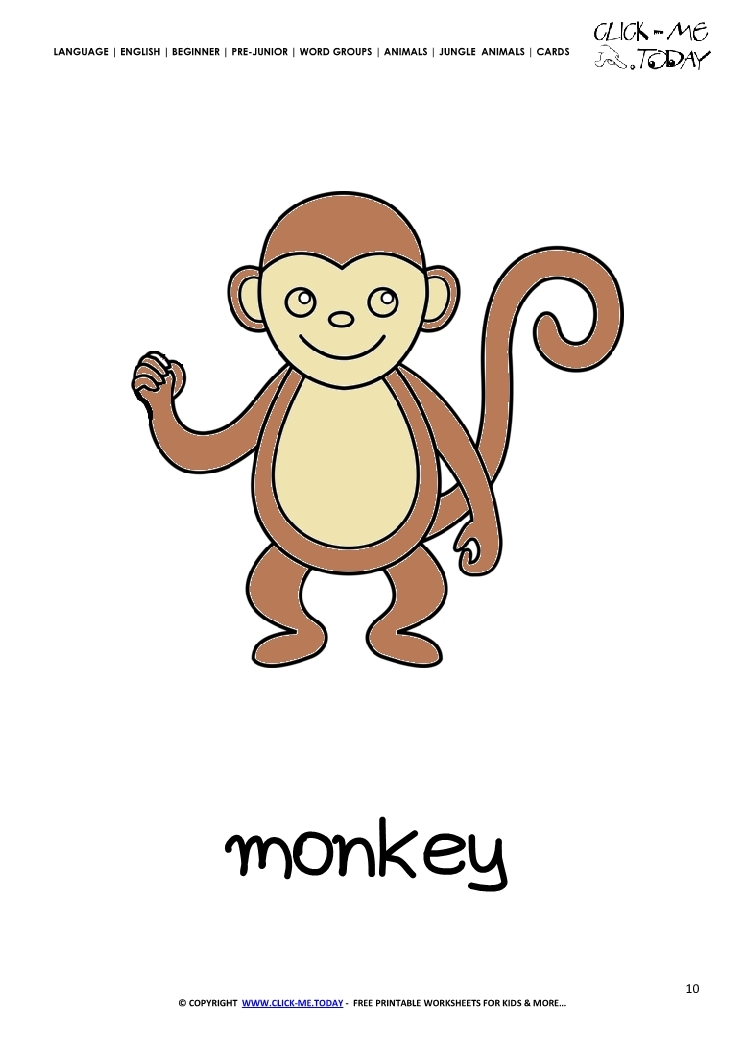 jungle animals coloring pages - 1650 jungle animal flashcard monkey printable card of monkey