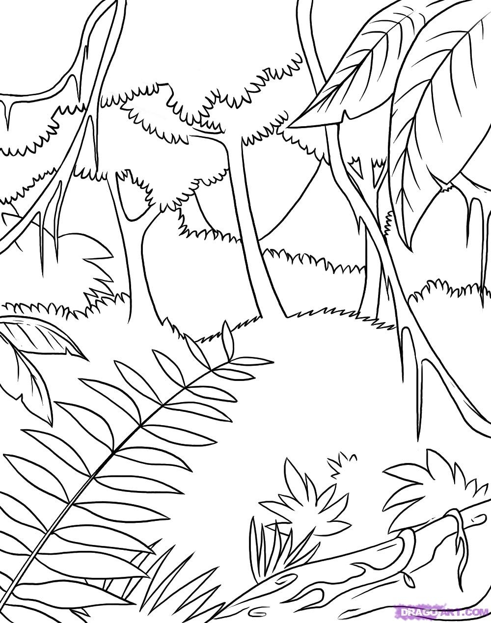 jungle coloring pages -