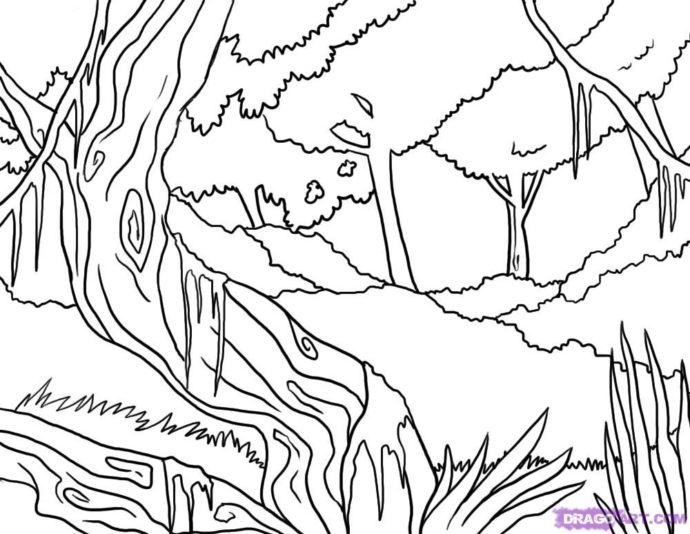 jungle coloring pages - jungle scene coloring pages