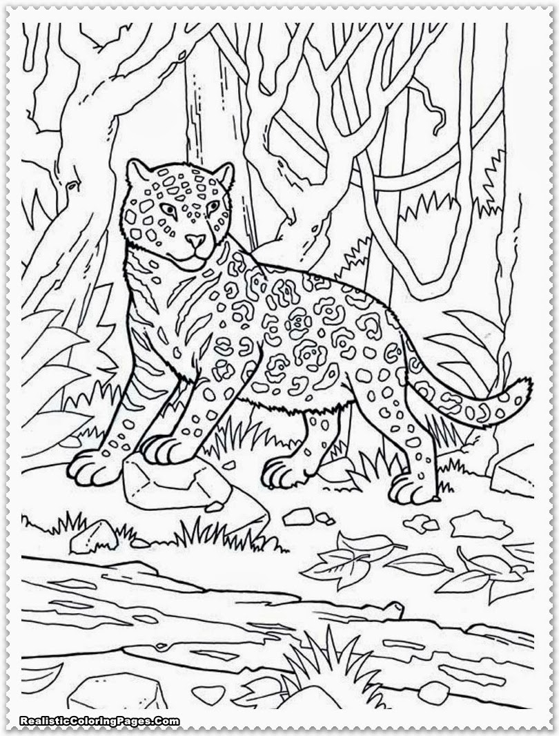 23 Jungle Coloring Pages Collections FREE COLORING PAGES