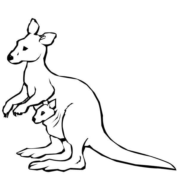 kangaroo coloring page - animal coloring kangaroo coloring pages