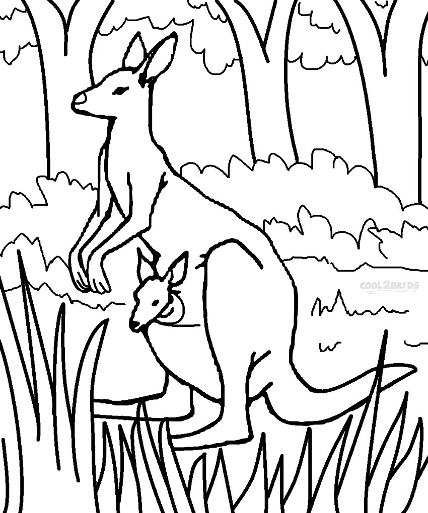kangaroo coloring page - coloring kangaroo coloring page puzzle sketch templates