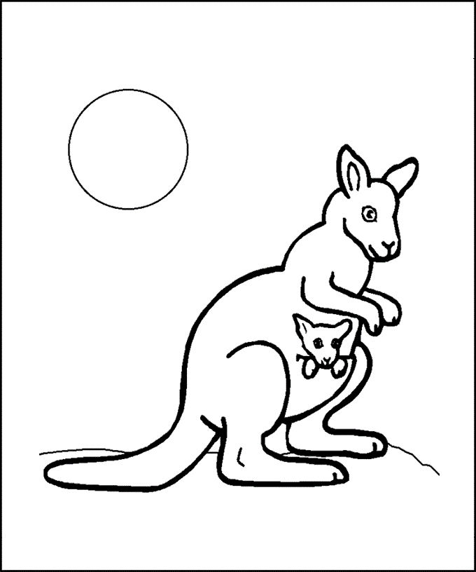23 Kangaroo Coloring Page Collections