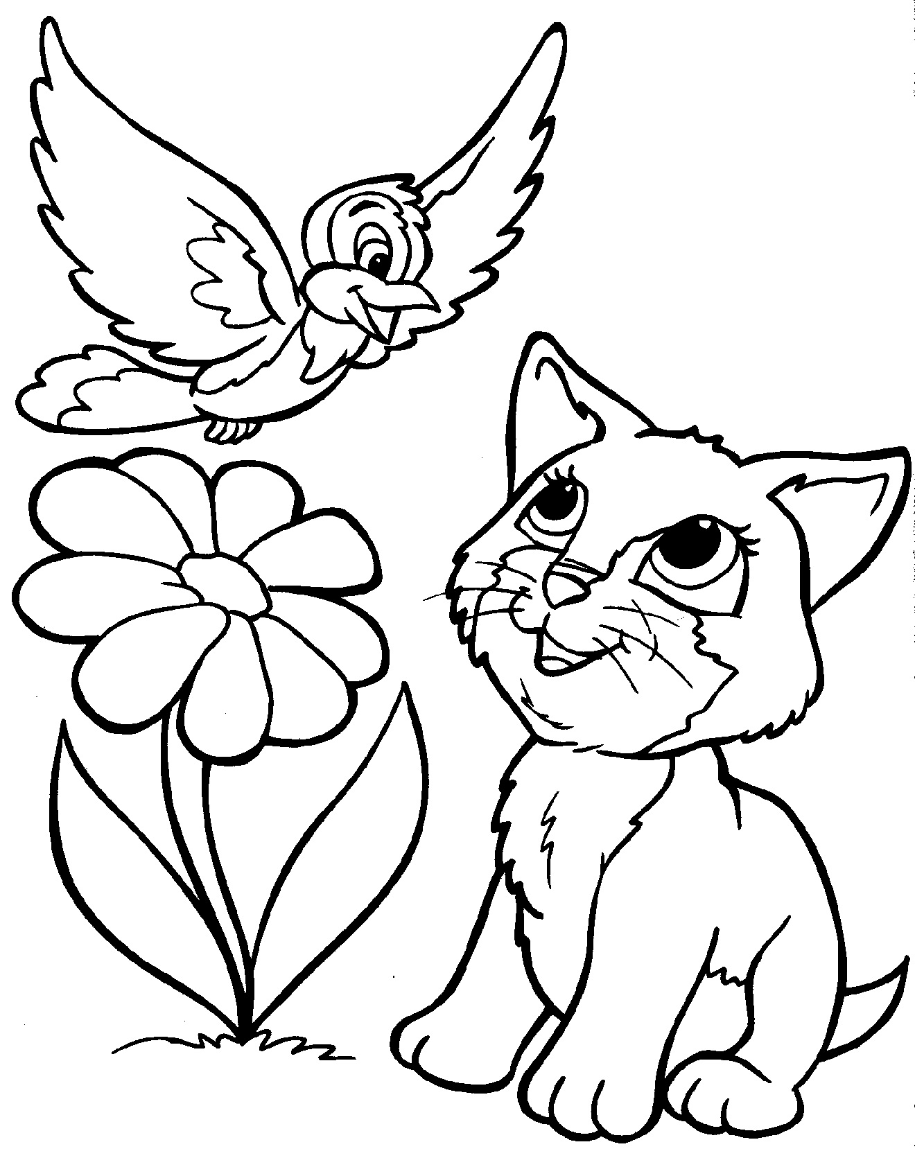 kitten coloring pages - koshka