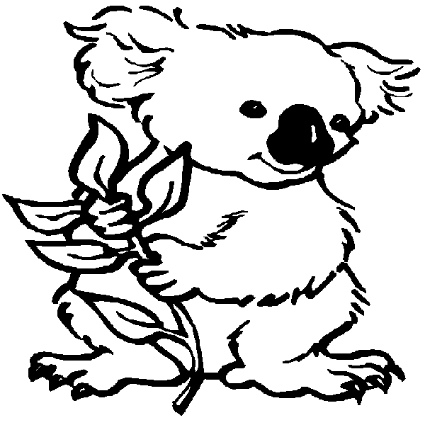 koala bear coloring page - koala coloring pages