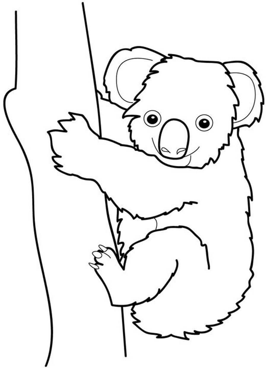 20 Koala Coloring Pages Compilation | FREE COLORING PAGES - Part 3