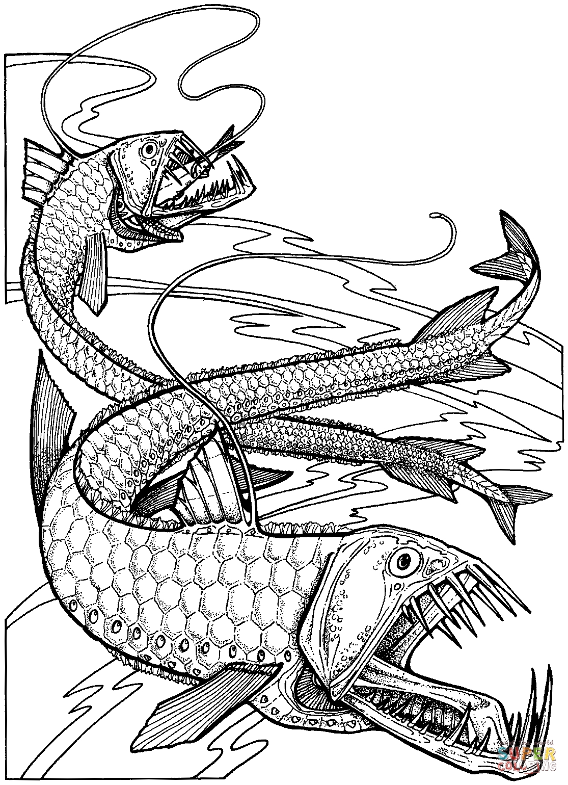 koi fish coloring page - viperfische