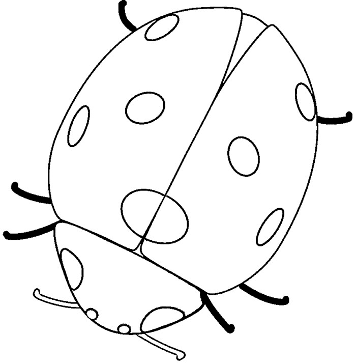 Ladybug Coloring Page - Free Printable Ladybug Coloring Pages for Kids