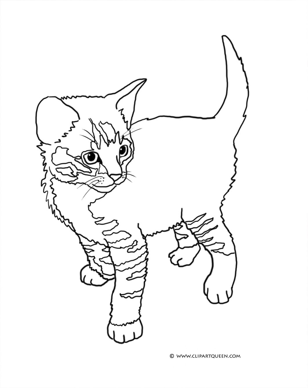 leopard coloring pages - cat coloring pages