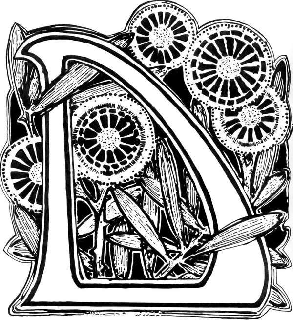 letter a coloring pages - Decorated letter D