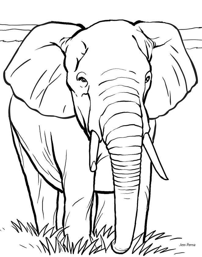 letter r coloring pages - 14 elephant coloring pages for kids