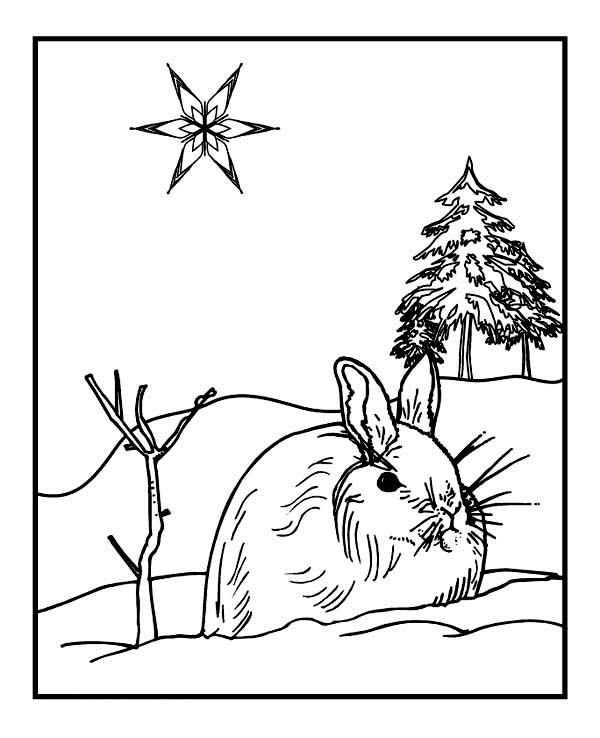light bulb coloring page - wild rabbit on winter season coloring page