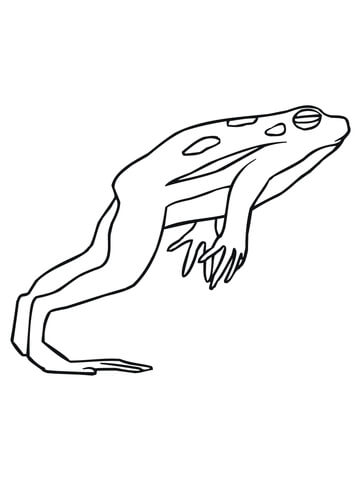 lily pad coloring page - grenouille qui saute