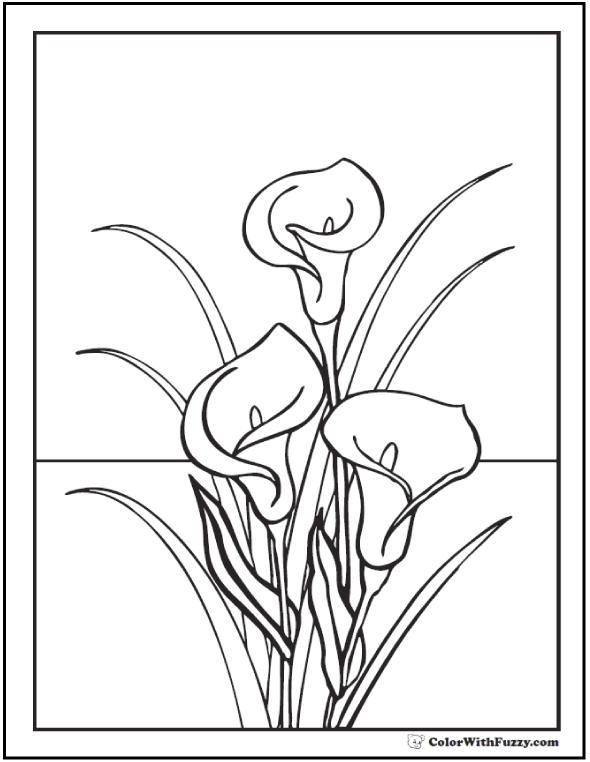 lily pad coloring page - lily coloring pages