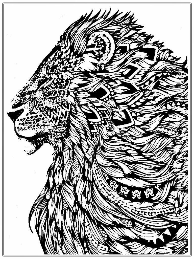 lion coloring pages for adults - realistic lion adult coloring pages free